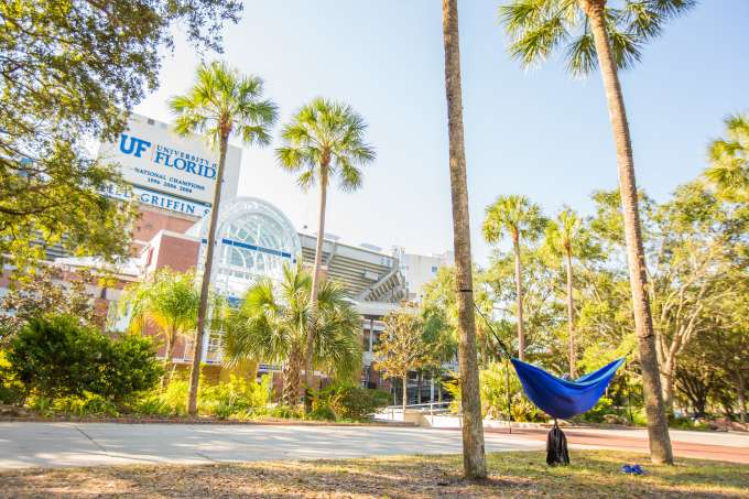 hammock in front of Ben Hill Griffin Stadium
